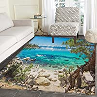 Nature Area Silky Smooth Rugs Lake Tahoe Snowy Mountain Reflection on Clear Water Rocky Shore View Floor Mat Pattern 3x5 Pale Blue Green Eggshell