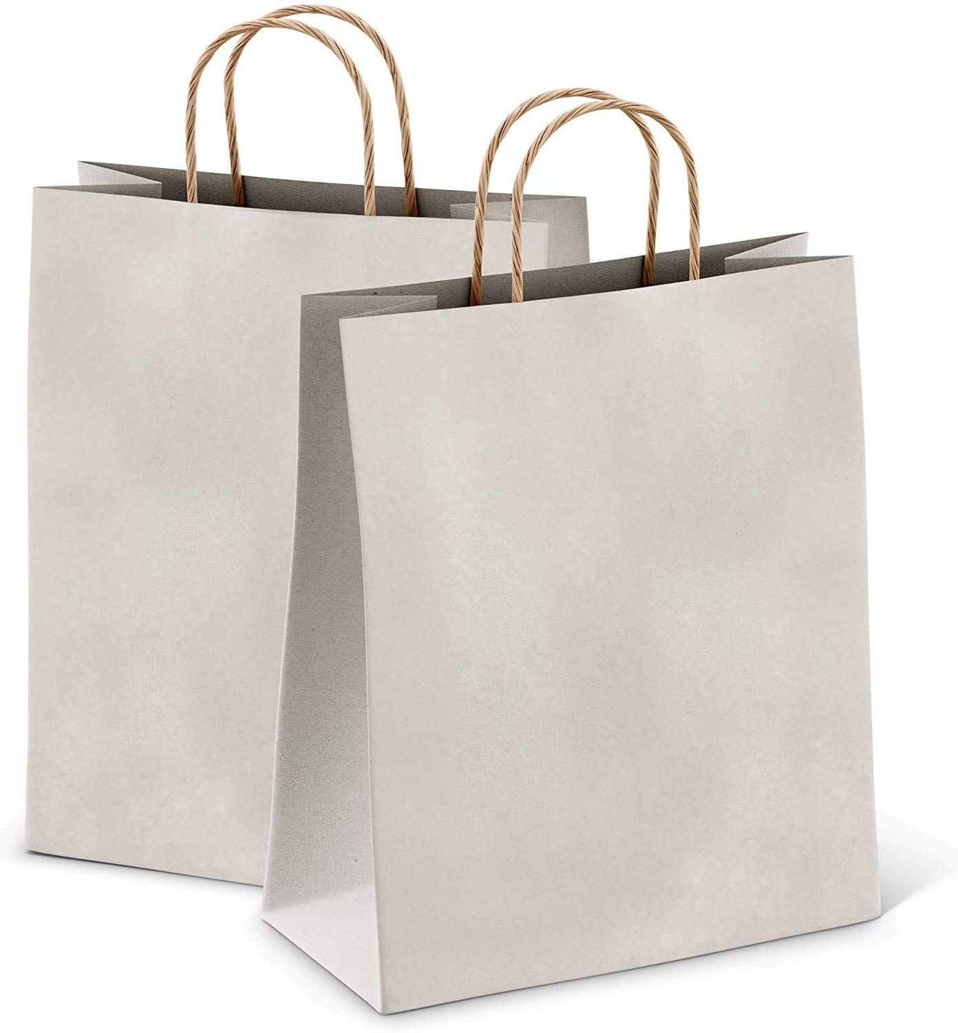 Paper Shopping Bags 10x5x13 Kraft Paper Bags 10 x 5 x 13 by Amiff. Pack of 25 Silver Retail Bags. Kraft Carrier Bags with Handles for Shopping, Merchandise and Grocery. Reusable. Silver 254x330x127