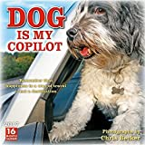 img - for Dog is My Copilot 2017 Wall Calendar book / textbook / text book