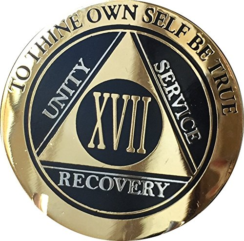 Aa Service Kit - Recoverychip 17 Year AA Medallion Elegant Black Gold Silver Bi-Plated Alcoholics Anonymous Chip