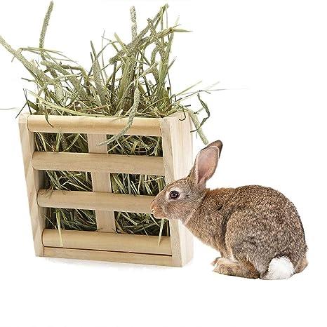 LEUM SHOP - Comedero para Conejos, cobayas, cobayas: Amazon.es ...