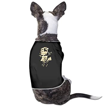 Ludwig van Beethoven perro ropa perro Jersey abrigos chaquetas: Amazon.es: Productos para mascotas