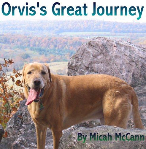 Orvis's Great Journey ()