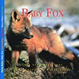 Baby Fox, Aubrey Lang, 155041724X