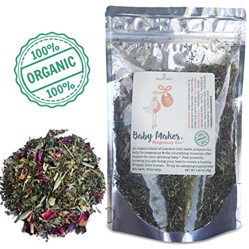 Modest Earth Baby Maker Tea | 100% ORGANIC HEALTHY PREGNANCY Nutrition | Conception and Fertility Aid | VITAMIN & MINERAL-RICH HERBS | Healthy Red Raspberry Leaf Blend | 48+ SERVINGS (2.48 OZ)