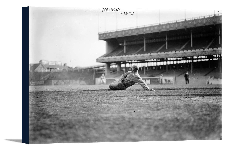 レッドMurray、NYジャイアンツ、野球写真# 2 36 x 24 Gallery Canvas LANT-3P-SC-5649-24x36 B01849TQNU  36 x 24 Gallery Canvas