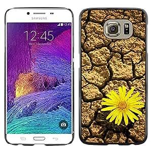 LASTONE PHONE CASE / Carcasa Funda Prima Delgada SLIM Casa Carcasa Funda Case Bandera Cover Armor Shell para Samsung Galaxy S6 SM-G920 / Design Desert Flower