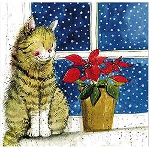 Amazon.com: Alex Clark - Juego de 10 tarjetas de Navidad con ...
