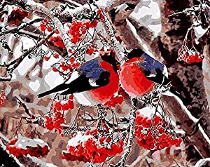 DIY Digital Canvas Oil Painting Gift for Adults Kids Paint by Number Kits Home Decorations- Finches In The Snow 16*20 inch