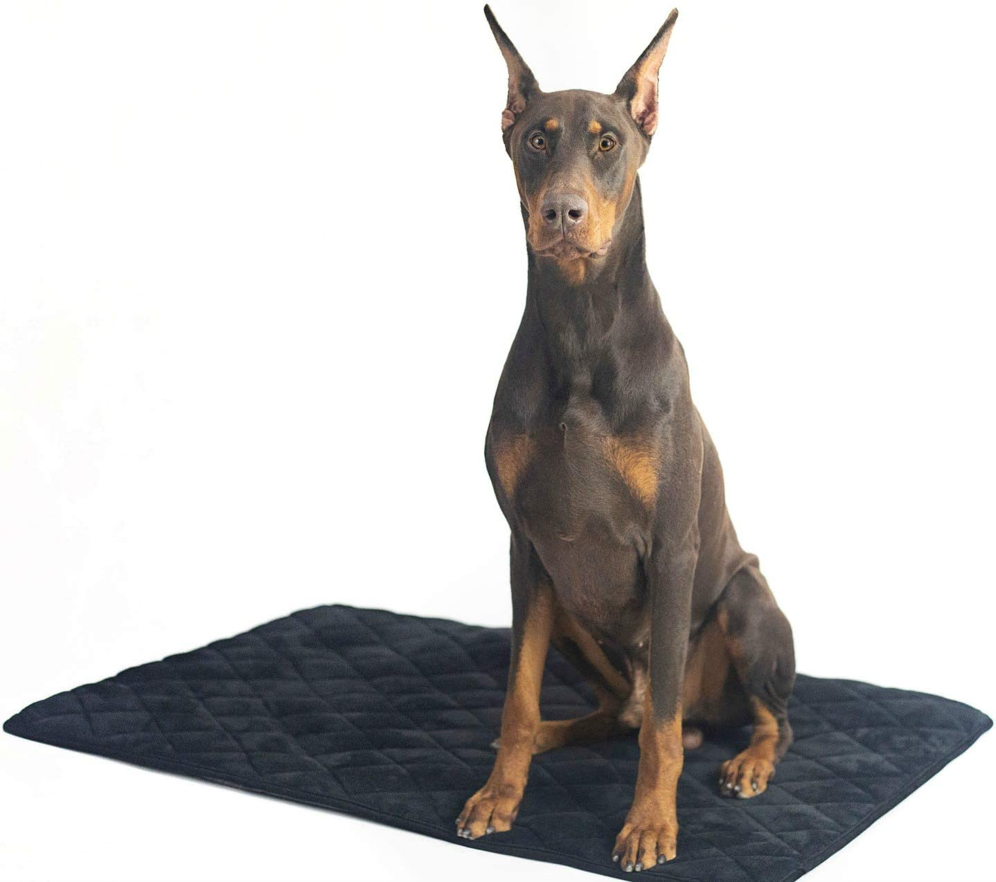 4Knines Dog Crate Mat