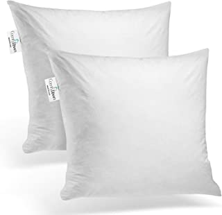 product image for ComfyDown Set of Two, 95% Feather 5% Down, 22 X 22 Square Decorative Pillow Insert, Sham Stuffer - Made in USA