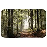 Rectangular Area Rug Mat Rug,Farm House Decor,Autumnal Forest Pathway in the Mountains With Mist in the Distance Wilderness Scene,Green Brown,Home Decor Mat with Non Slip Backing