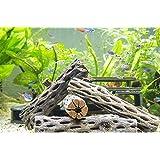 Cholla Wood, 3 Nice Pieces of Aquarium Driftwood Decoration by Aquatic Arts
