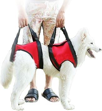 Arnés con asas para perro de Geekbuzz, para patas delanteras y ...