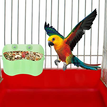 Alimentador montable Pájaro Verde Juguete Comida Plato de Agua Taza Loros Alimentador, Suministros para Mascotas Caja de Comida para pájaros, balcón del Parque para pájaros Salvajes para: Amazon.es: Hogar
