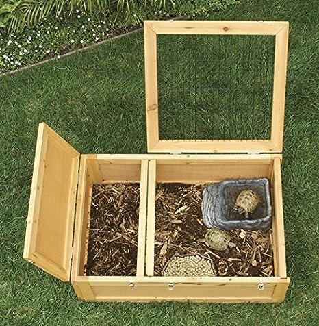 Jaula de madera para tortuga de tierra: Amazon.es: Productos para ...