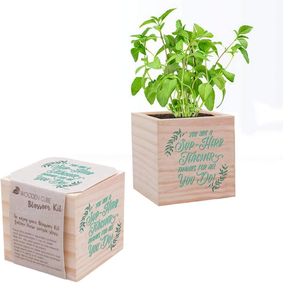 An image of a desk accessory wooden plant kit with basil planted in it.