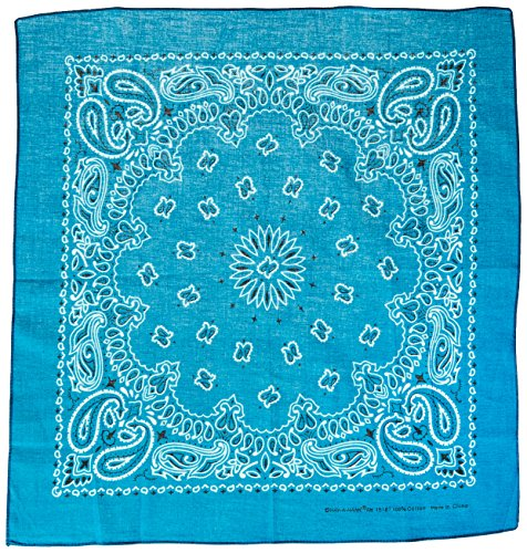 carolina-have-a-hank-paisley-bandannas-22-inch-by-22-inch-turquoise