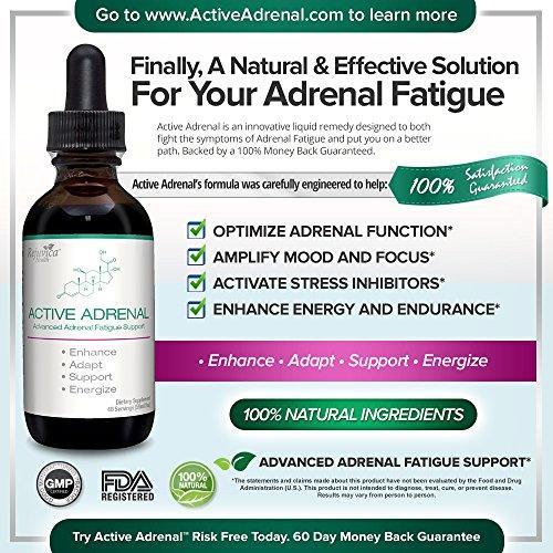 Active Adrenal - Advanced Adrenal Fatigue Supplement   All-Natural Liquid Formula for 2X Absorption   Ashwagandha, B-Vitamins, Magnesium & More by Active Adrenal (Image #2)