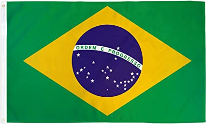 "12/"" x 18/""  Brazil Brazilian National Banner 12x18 IndoorOutdoor Polyester Flag19"
