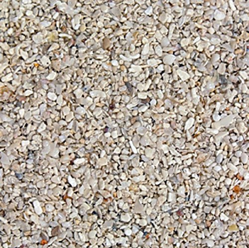 Carib Sea ACS00050 Aragonite Reef Sand for Aquarium, 40-Pound by Carib Sea