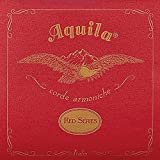 Aquila Red Series AQ-71 Concert Ukulele String - Low G - 4th String
