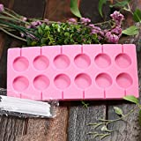 SK 12-Capacity Lollipop Silicone Mold with 20Pcs/Pack Sucker Sticks for Baking Random Color