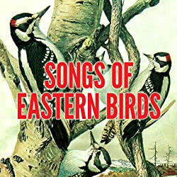 Songs of Eastern Birds