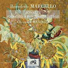 Flute Sonata in F Major, Op. 2 No. 12: V. Chaconne. Allegro