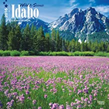 Idaho, Wild & Scenic 2016 Square 12x12 by Browntrout Publishers (2015-07-15)