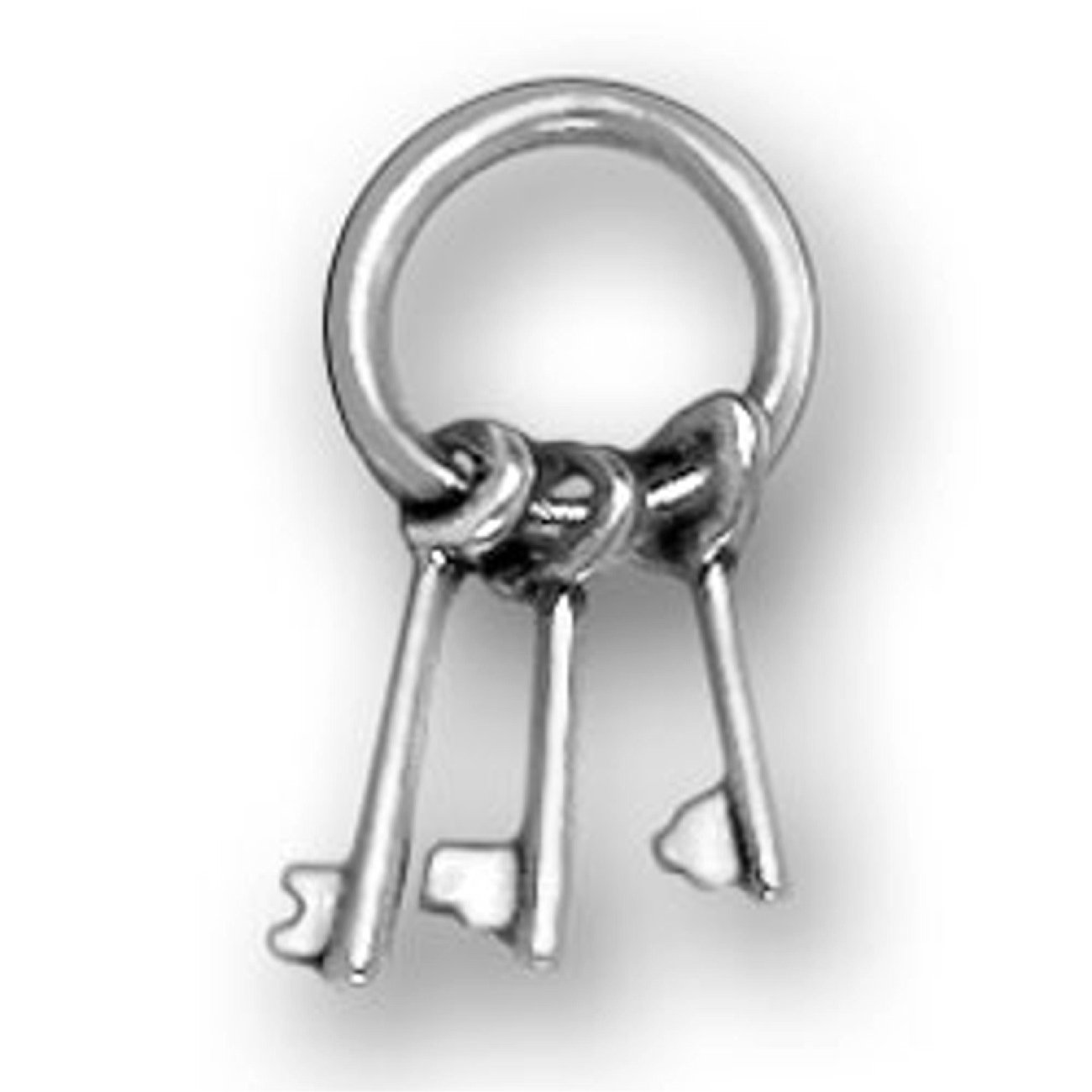 Sterling Silver Girls .8mm Box Chain 3D Keys On Round Key Ring Pendant Necklace