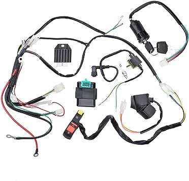Amazon Com Minireen Complete Electric Start Engine Wiring Harness Cdi Coil Wiring Loom 50cc 110cc 125cc Atv Buggy Quad Dirt Bike Automotive