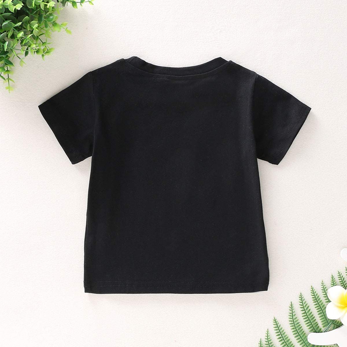 Baby Girl Big Sister T-Shirt Toddler Girl Short Sleeve Sibling Shirts Little Baby Girls Letter Print Tee Tops Clothes
