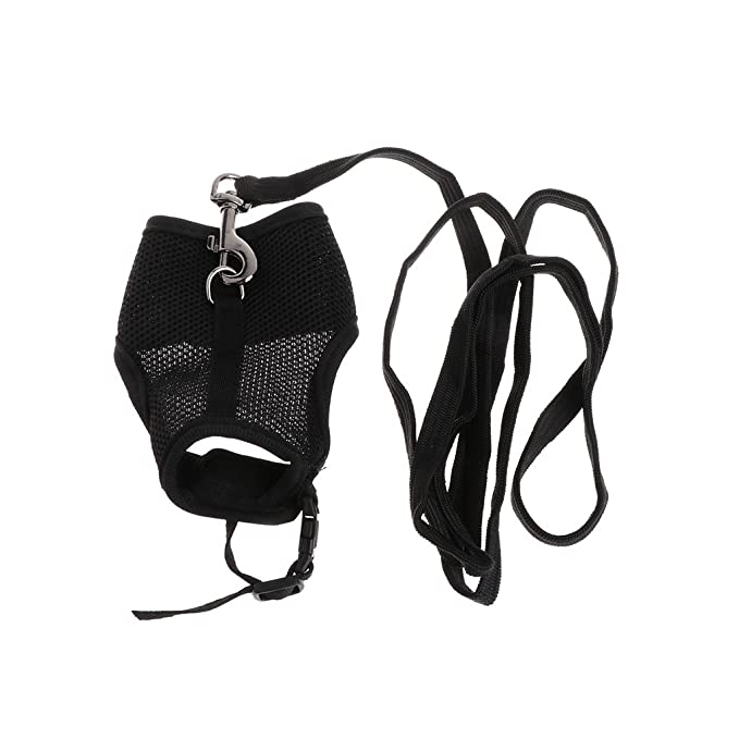 Dog Harness Bow