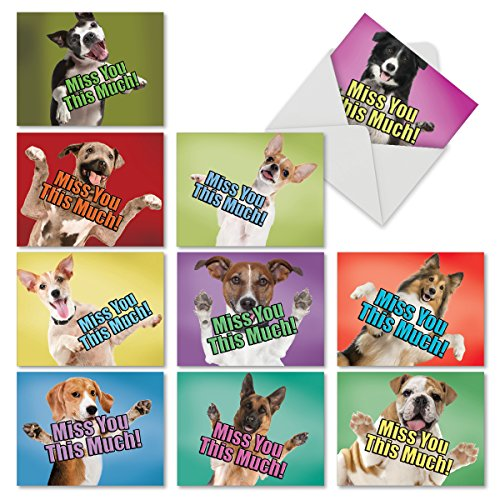 10 'Dog Miss You This Much' Note Cards with Envelopes 4 x 5.12 inch, Blank Greeting Cards with Dogs Showing Their Yearning, All Occasions Animal Stationery for Birthdays, Baby, Holidays M6600MYB ()