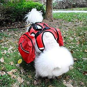 Meiyiu Mochila Auto Desmontable para Perros domésticos con Correa para el Pecho Anti-acometida para Viajar, Caminar Rojo…