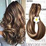 Clip in Human Hair Extensions Medium Brown with Honey Blonde Highlights 4/27 Clip on Balayage Ombre Hair Extensions 14 inch 7 PCS Full Head Silky Straight Long Fine Hair 70g Remy Hair