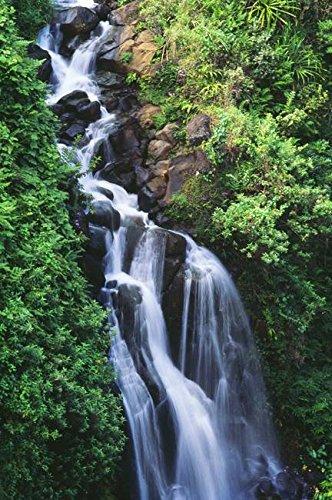 Hawaii Waterfall (Wall Art Print entitled Hawaii, Big Island, Hamakua Coast, Waterfall Runni by Design Pics | 16 x 24)