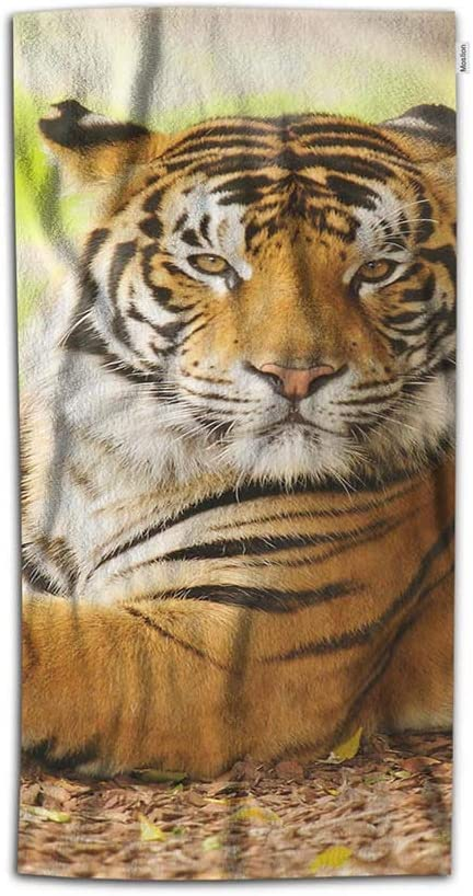Moslion Tiger Hand Towel Asian Animal Wildlife Tigers in Wild Nature Towel Soft Microfiber Face Hand Towel Kitchen Bathroom for Kids Baby Men 15x30 Inch Orange