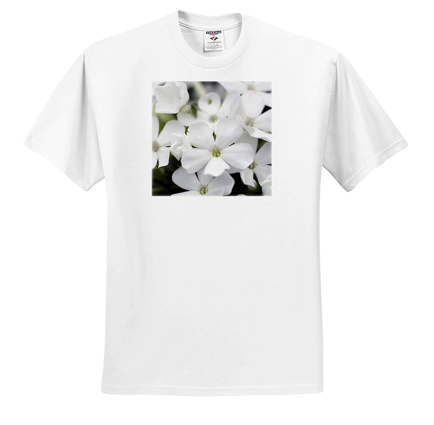 Flowers Macro Photograph of White Phlox Blooming in a Garden 3dRose Stamp City ts/_316773 - Adult T-Shirt XL