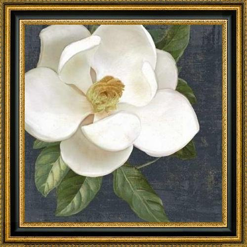white-magnolia-2-by-julie-ueland-24-x-24-framed-premium-canvas-print