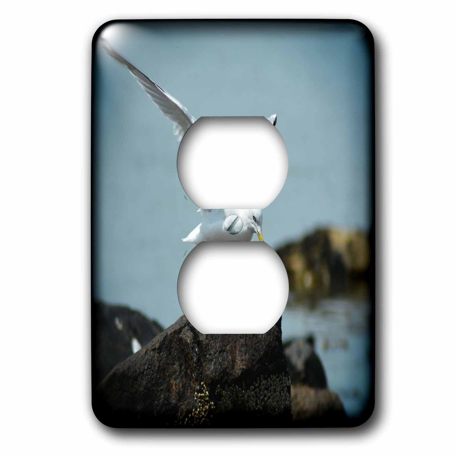 3dRose WhiteOaks Photography and Artwork - Seagulls - White Seagull with open Wings is a beautiful white seagull - Light Switch Covers - 2 plug outlet cover (lsp_265367_6)