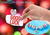 Sambaah Sterling Silver Horseshoe Lucky Charms-Rose Gold Plated Beads with Cubic Zirconia Stones fit Women Pandora Bracelets