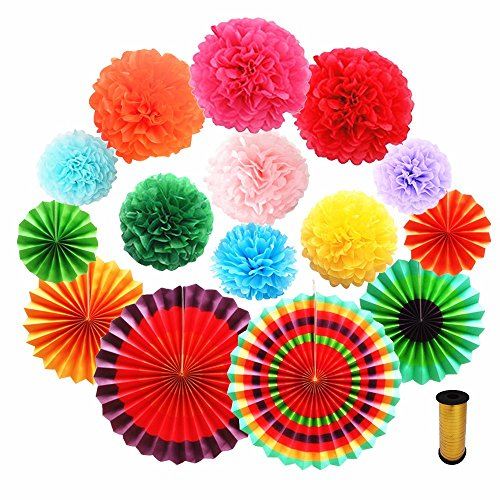- NEWFUN Rainbow Paper Pom Pom Flowers 9 Colors Paper Folding Fans Colorful Decorations for Birthday Party and Wedding(16 PCS)