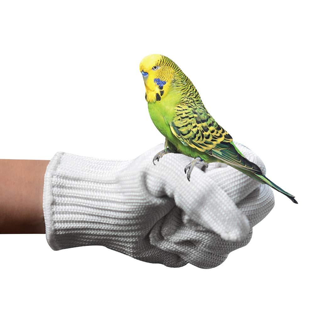 Entrenamiento de Aves Guantes Anti-Mordida Mascotas Masticando Guantes de Manipulaci/ón Protectora Protecci/ón de Manos Seguridad de Trabajo Guantes de Aves ZZM Parrot Anti-Mordiendo Guantes 1 Par