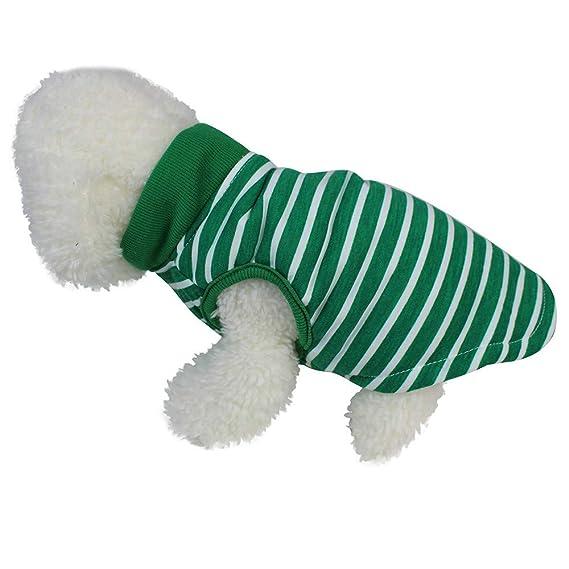 Ropa para Mascotas,Dragon868 Lindo Cuello Alto Chaleco Camisa Perros pequeños Mascotas Ropa: Amazon.es: Ropa y accesorios