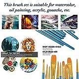 Acrylic Paint Brush Set, 5 Packs / 50 pcs Nylon