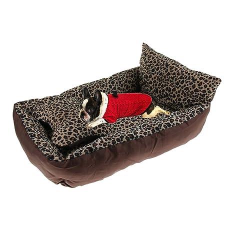 Homyl Sofá Lavable Cama Perla Perros Gatos Accesorios de Animales Fácil de Usar Elegante: Amazon.es: Deportes y aire libre