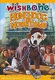 Hunchdog of Notre Dame [DVD] [Import]