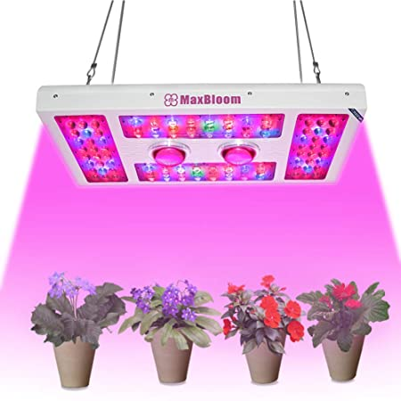 Cree COB LED Grow Lights 1000W w//Dimmable Veg //Bloom /& Full Spectrum Hydro Lamps